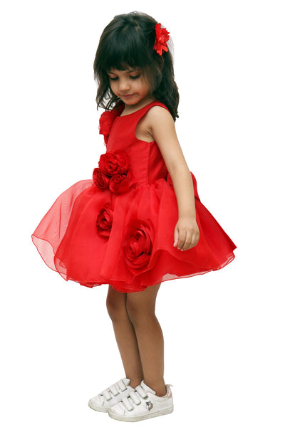 Red Rose Garden Party Dress