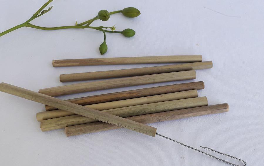 Bamboo Straws With Brush - Straws - indic inspirations