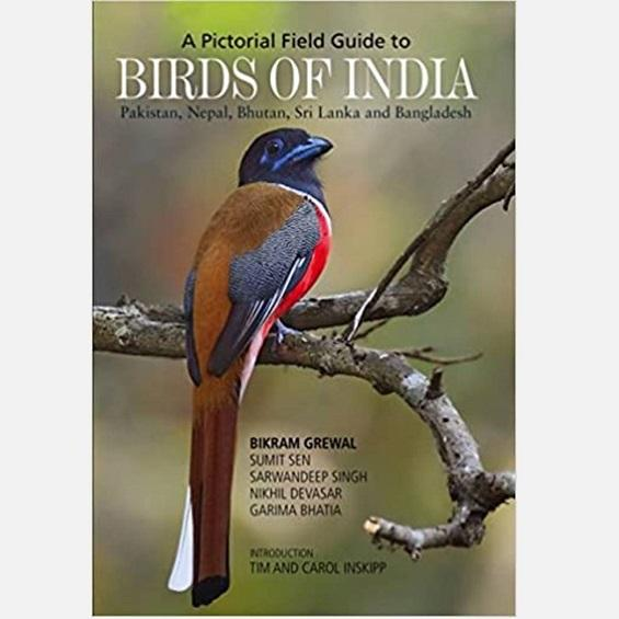Birds of India - Books - indic inspirations