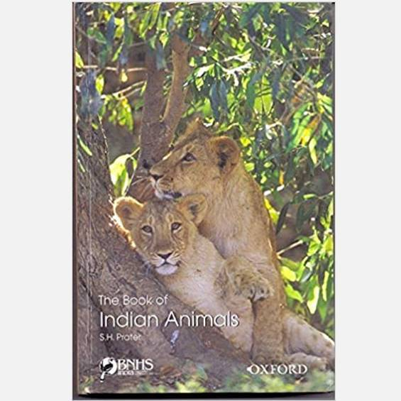 The Book of Indian Animals - Books - indic inspirations