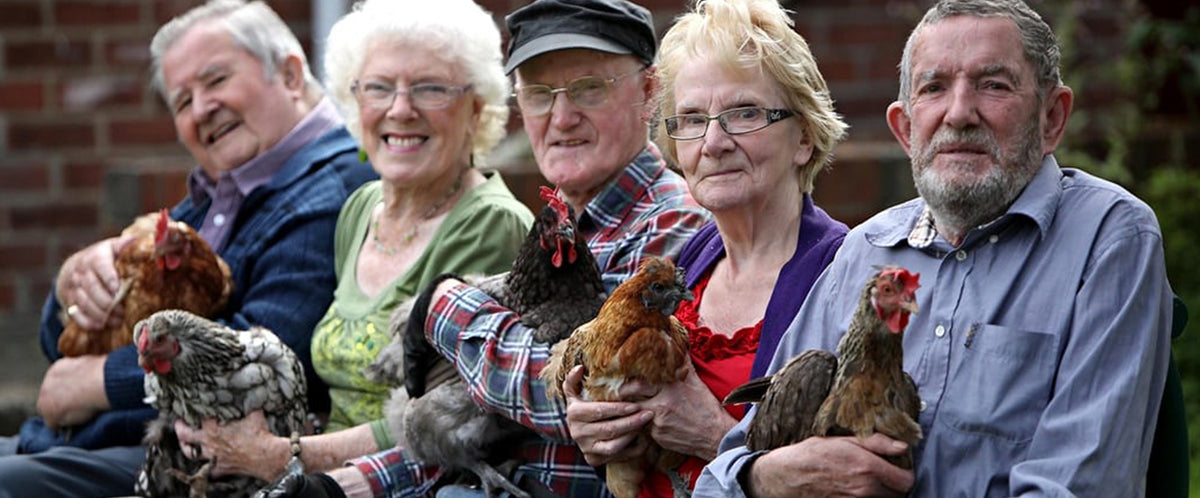 Hats off to HenPower! Hen-keeping in care homes