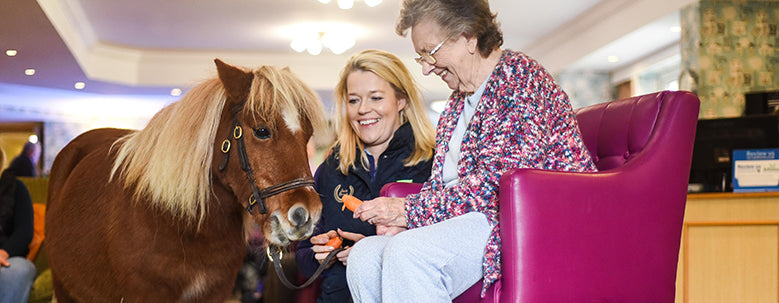 Jack Pony Care Home Christmas Party