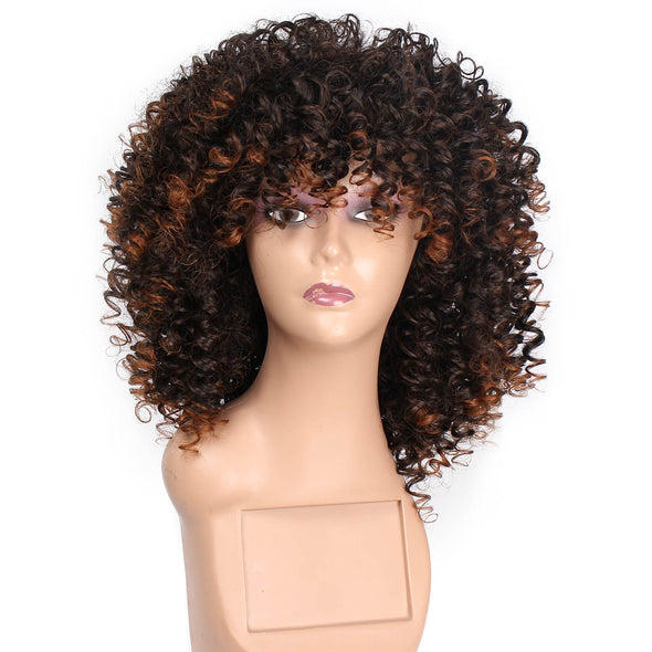 Synthetic Curly Short Mix Brown Wig for Women