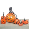 Black Speckled Orange Pumpkins with Black Stems