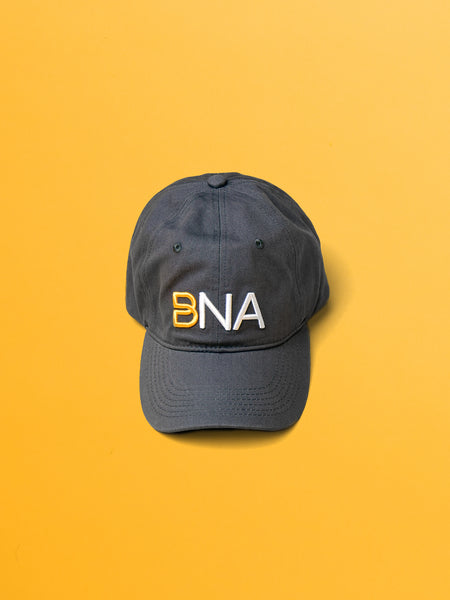 BNA logo cap in gray