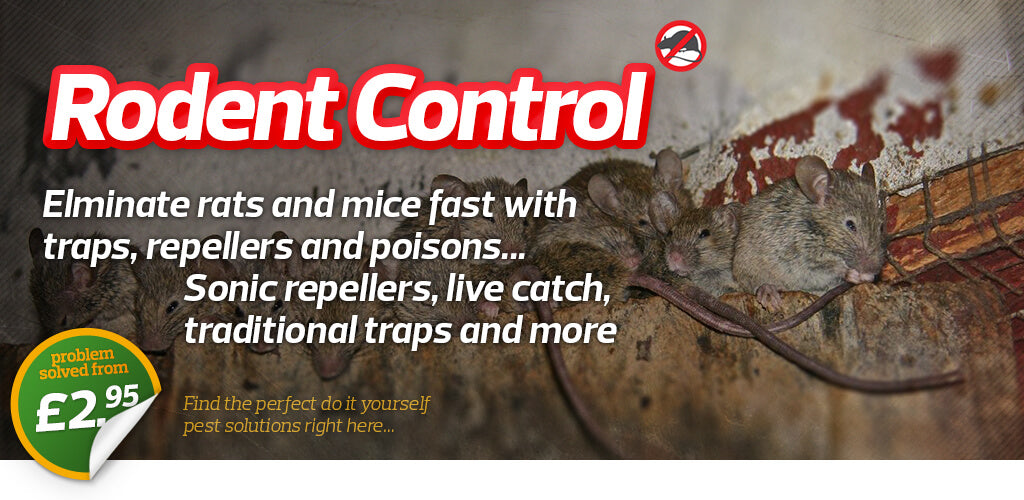 Mice & Rats | Pest Free Home