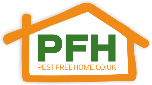 Choose Us for DIY Pest Control Solutions
