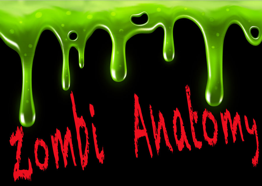 Zombie Anatomy (Rising 1st - 2nd grades)