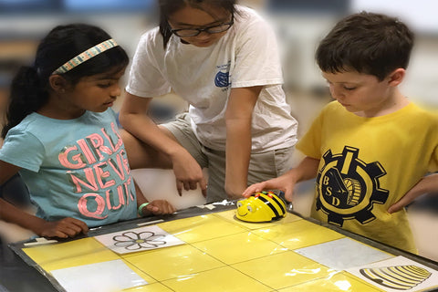 Bee-Bot and Edison (K - 2nd grades)