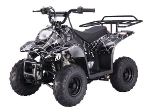 Taotao Boulder B1 ATV, 110CC Air cooled, 4-Stroke, with reverse Automatic
