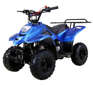 TaoTao Boulder B1 110cc ATV, Automatic Transmission, Free Shipping to your door