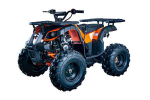 RIDER-10 125cc ATV, SINGLE CYLINDER,4 STROKE,AIR-COOLED(in stock)