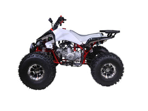 taotao-125cc-new-cheetah-mid-size-atv-automatic-with-reverse-air-cooled-4-stroke-1-cylinder