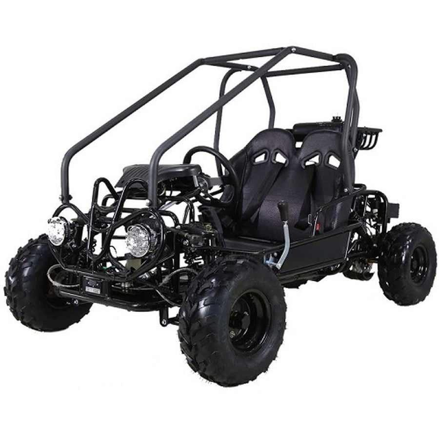 Taotao GK110 110CC  Air Cooled, 4-Stroke, 1-Cylinder, Automatic with Reverse,Youth Go Kart,