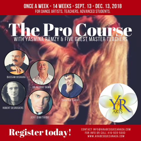 YR Arts 14 Week Pro Course