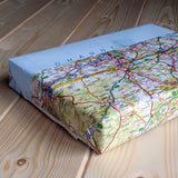 Bookishly vintage map wrapping paper