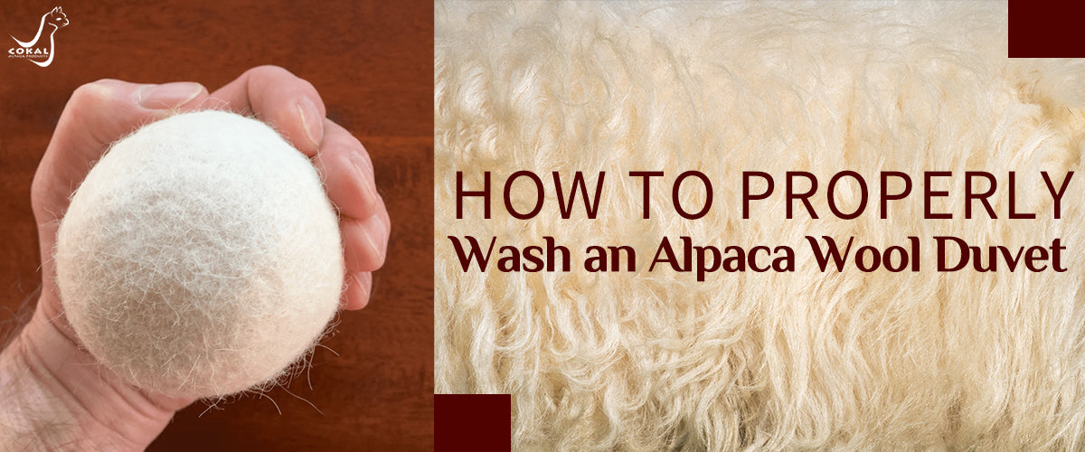 How to Properly Wash an Alpaca Wool Duvet