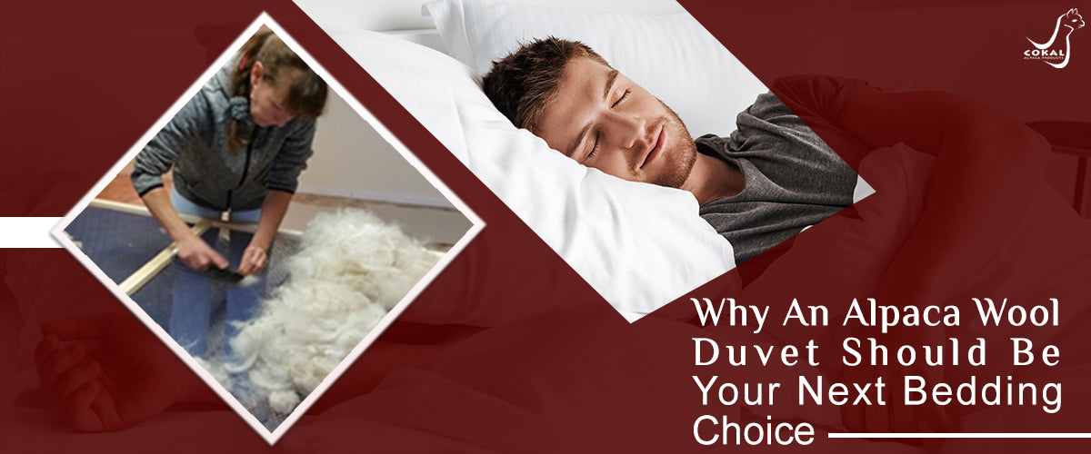Why An Alpaca Wool Duvet Should Be Your Next Bedding Choice