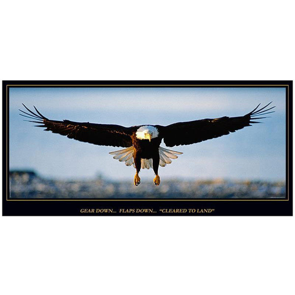 Aero Phoenix - Cleared to Land, Eagle Poster | B APX 100