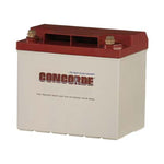 Concorde RG25 General Aviation AGM Aircraft Battery - 12V