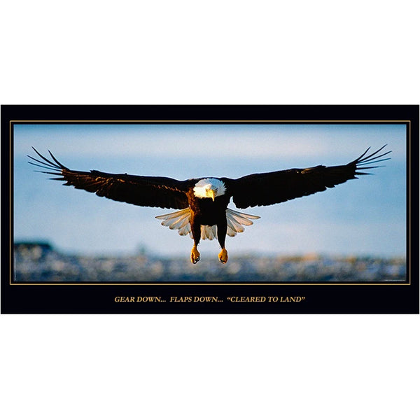 Aero Phoenix - Cleared to Land, Eagle Poster, Laminated