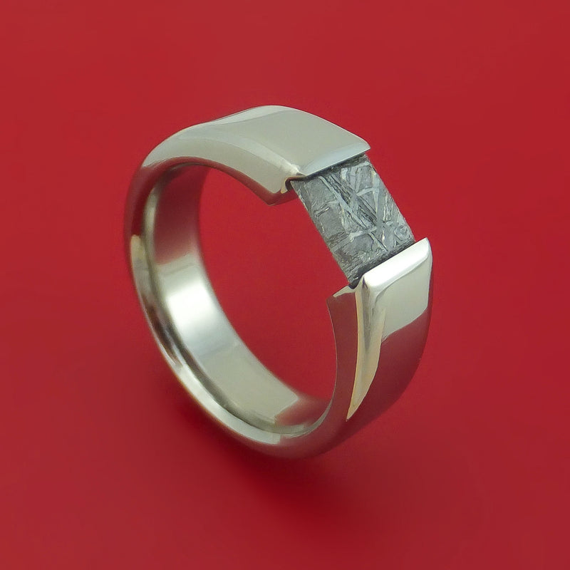 Titanium Ring with Meteorite Tension-Set Stone Custom Made Band