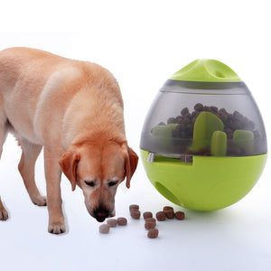 Toys Feeder Pet Accessories