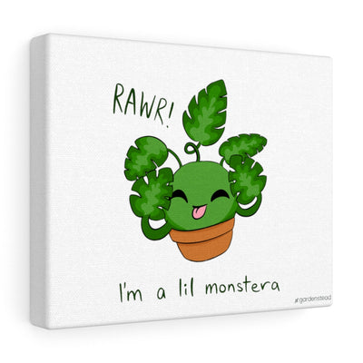 lil monstera canvas