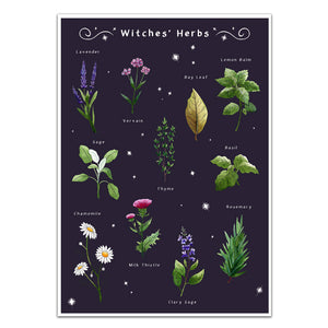 gothic home decor, witches herbs wall art