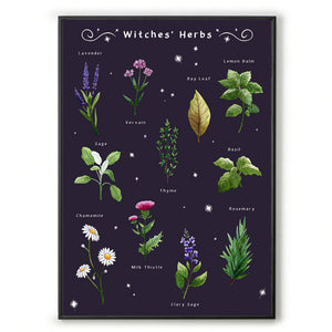 witches herbs gothic home decor for her. Witchcraft wall art