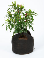 5 Gallon Smart Pot (w/Handles)