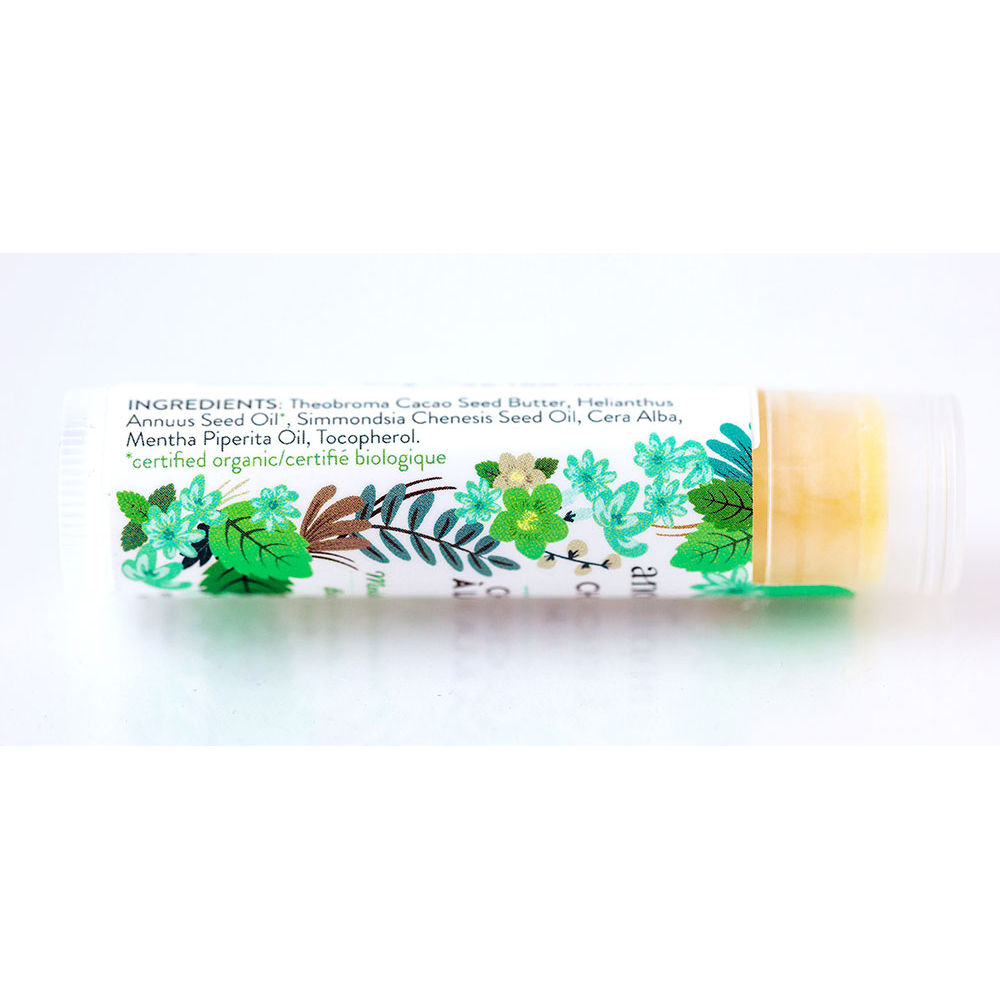 Anointment | Chocolate Mint Lip Balm | 4.25g