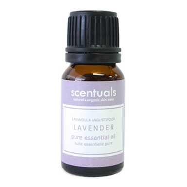 Lavender Essential Oil | 10 ml