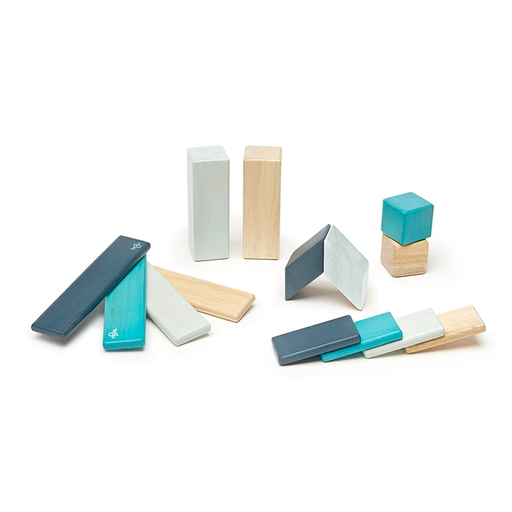 Tegu Toys 14 piece magnetic block set in Blues