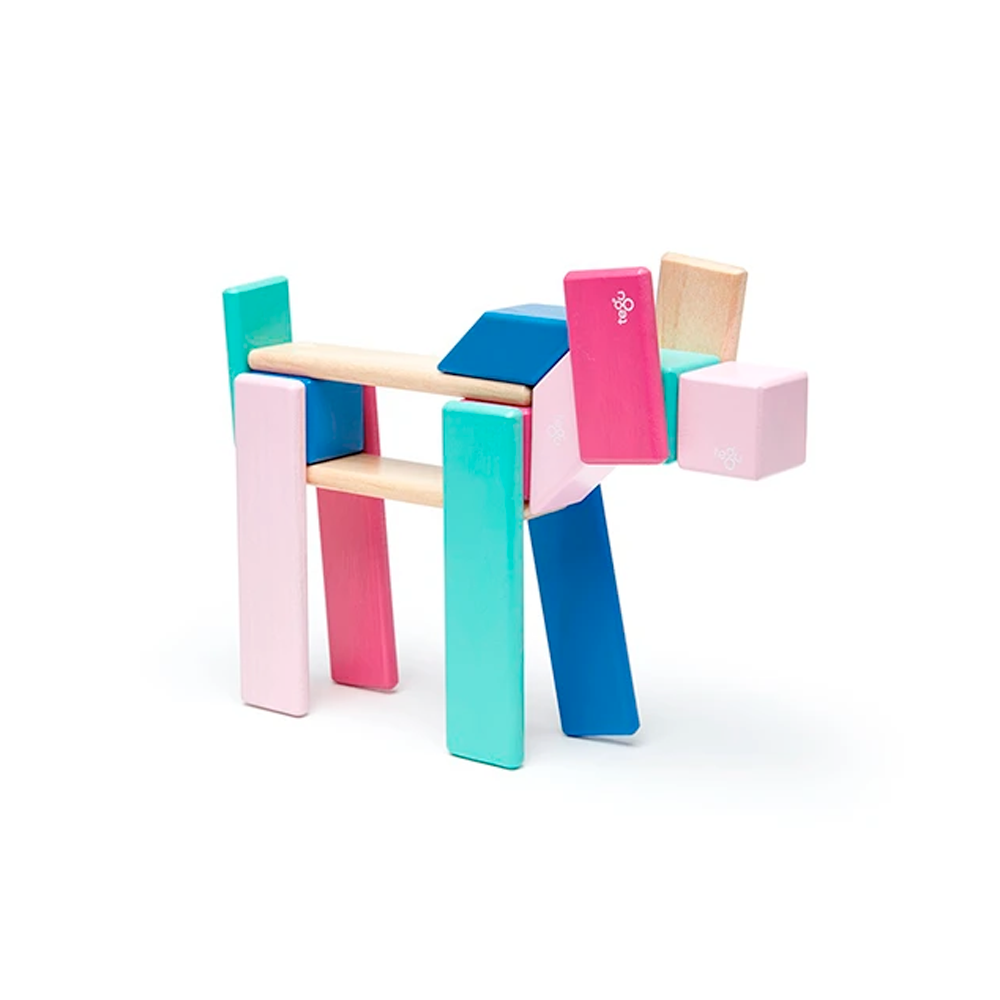 Tegu Toys 24 piece magnetic block set in Blossom set up to look like a dog