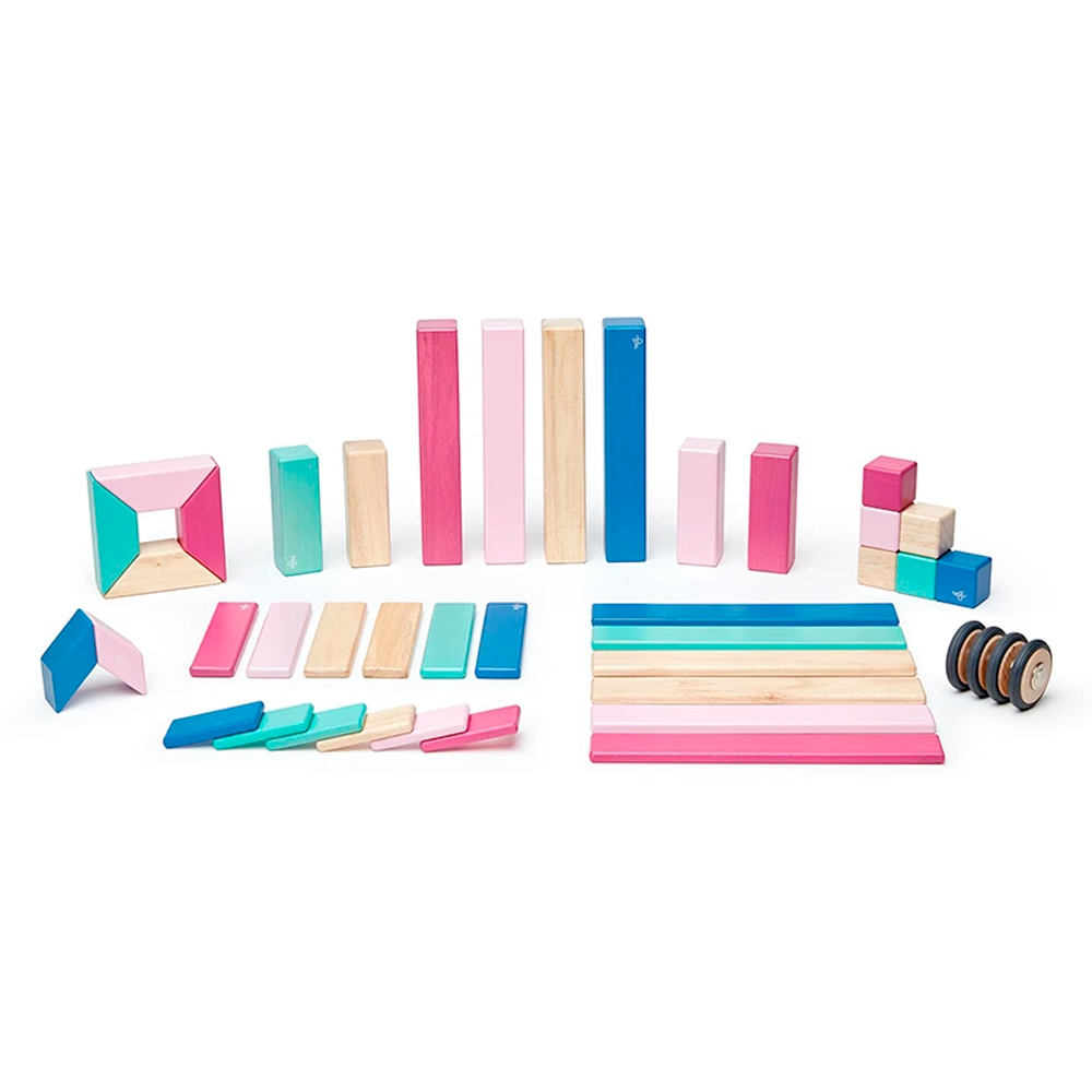 Tegu Toys 42 piece magnetic block set in Blossom