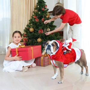 SantasHelper - Xmas Dog Costume