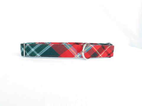 New Brunswick Provincial Tartan Dog Collar-Taylors Tartans
