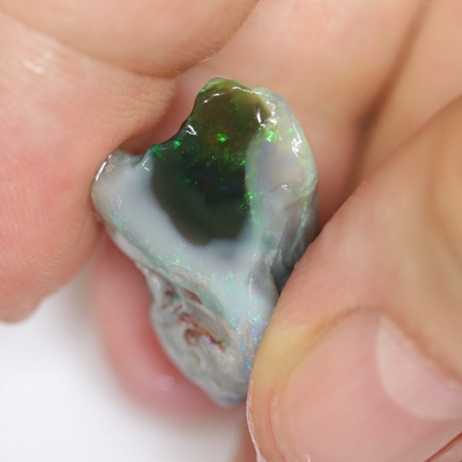 16.30 cts Australian Lightning Ridge Opal Rough For Carving