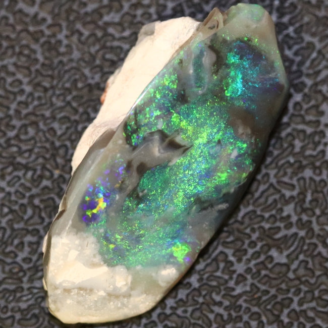 11.9 cts Australian Black Opal Rough Lightning Ridge Polished Specimen