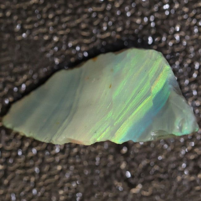 19.30 cts Australian Lightning Ridge Opal Rough for Carving