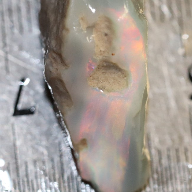 27.15 cts Australian Lightning Ridge Opal Rough for Carving