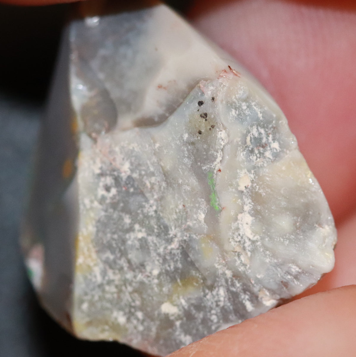 16.9 cts Australian Opal Rough Lightning Ridge Polished Specimen Solid