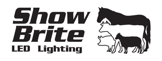 Show Brite LED lighting logo