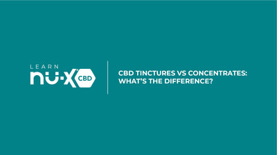 CBD Tinctures vs Concentrates: What's the Difference?