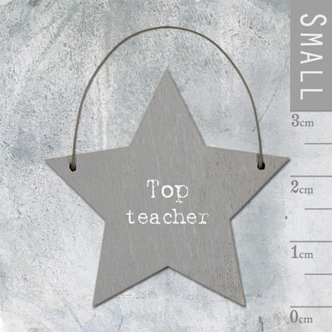 Top Teacher Mini Keepsake Star