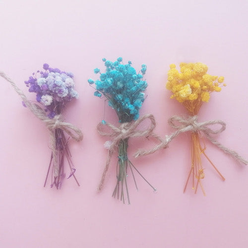 Dried Flower Gypsophila Mini Bunch