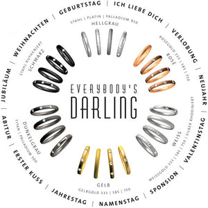 Collection Ruesch Everybody's Darling 3 Palladium/Edelstahl-Ringe