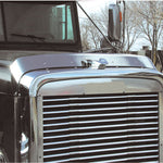 Freightliner Classic stainless steel bug deflector