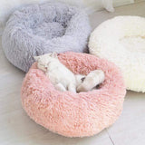 PET PRODUCTS CAT PRODUCTS Plush Cat Bed Comfortable Stuff to Cats